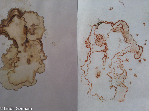 trace monoprint of a water stain