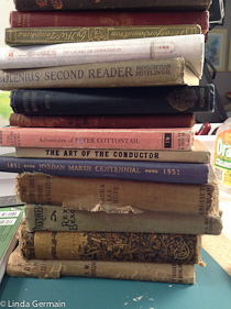 collect old books for art making