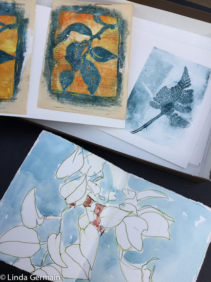 sketches and gelatin prints in the greenhouse